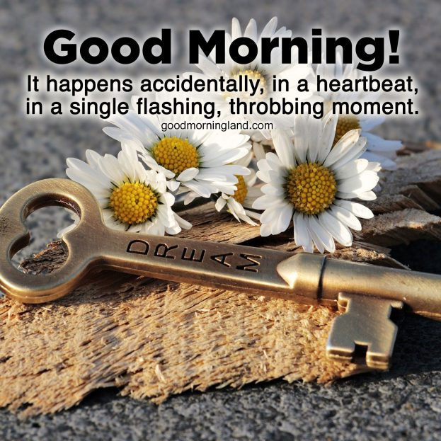 Thank your partner with Good Morning romantic images - Good Morning Images, Quotes, Wishes, Messages, greetings & eCard Images.