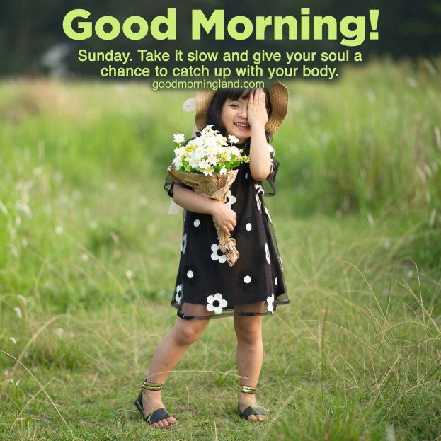 Top Attractive and Good morning Sunday morning images - good morning happy sunday quotes, good morning sunday friends, good morning sunday gif, good morning Sunday images for whatsapp, good morning sunday love images, good morning Sunday messages, happy sunday images, Sunday Morning Images