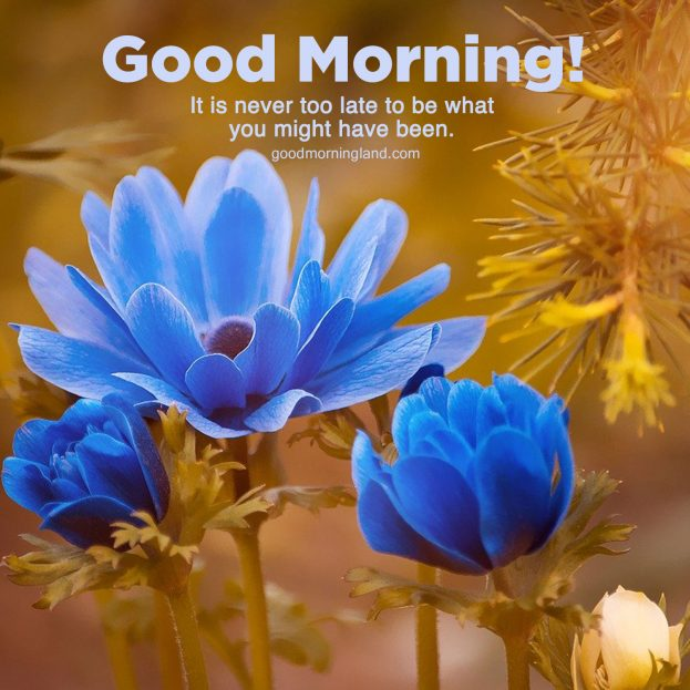 Top animated Good morning blessed quotes for friends - Good Morning Images, Quotes, Wishes, Messages, greetings & eCard Images.