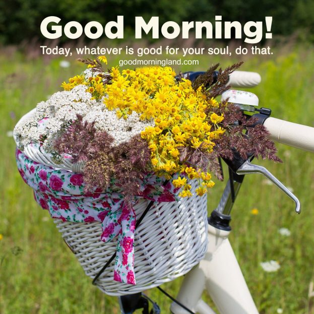 Top ten Good morning Sunday morning photos 2021 - Good Morning Images, Quotes, Wishes, Messages, greetings & eCard Images.