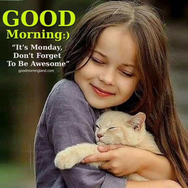 Free Top Good morning free Monday images 2021 - Good Morning Images, Quotes, Wishes, Messages, greetings & eCard Images.