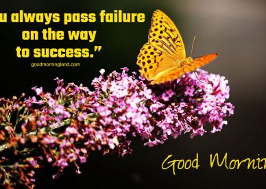 Good Morning Wallpaper HD 2021 - Good Morning Images, Quotes, Wishes, Messages, greetings & eCard Images.
